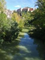 Castela La Mancha