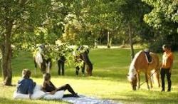 As 6 melhores casas de Turismo Rural no Alentejo